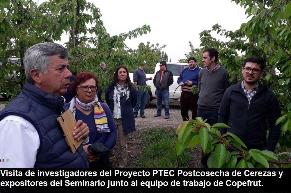 """Avances del Proyecto Corfo """"Aumento del potencial de almacenamiento y de la calidad general de cerezas"""""""