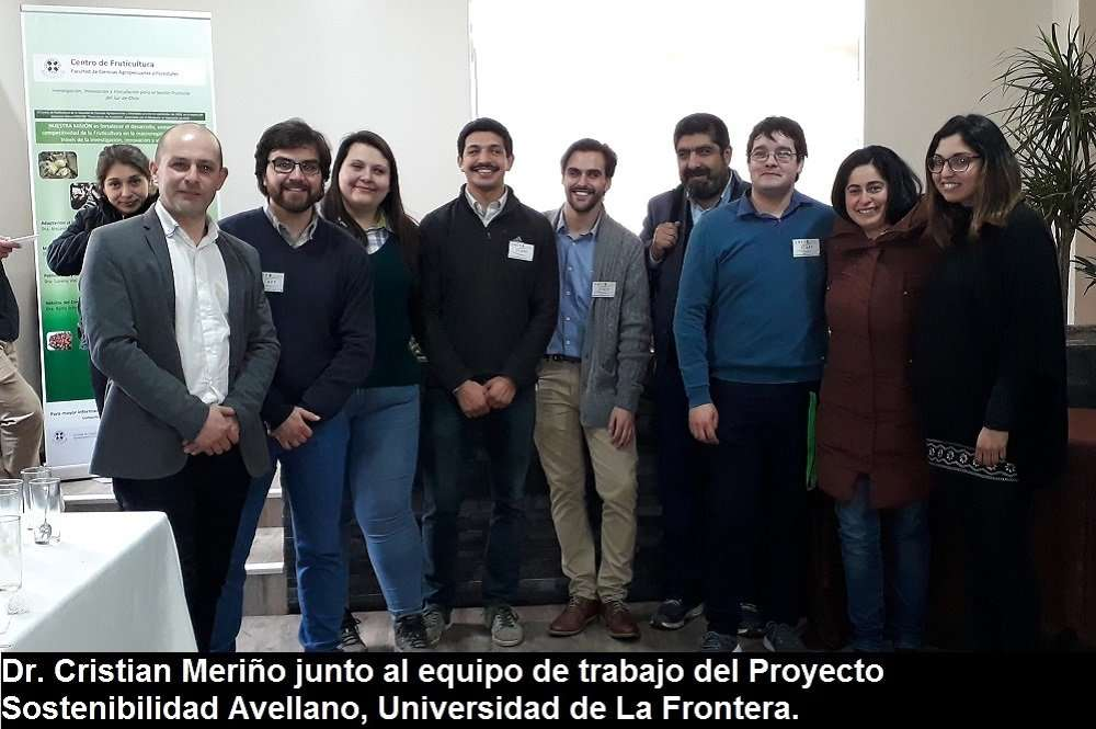 Avellano Europeo: Desafíos para la producción sostenible e innovación en el Sur de Chile