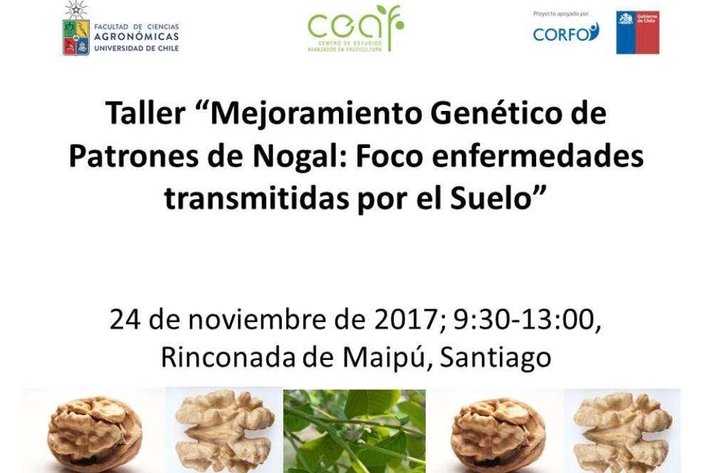 """Taller """"Mejoramiento Genético de Patrones de Nogal: Foco enfermedades transmitidas por el Suelo"""""""