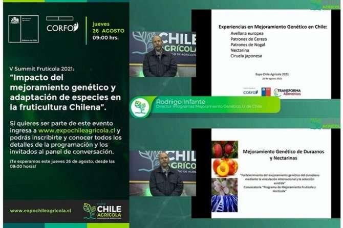 V Summit Frutícola 2021: «Impacto del mejoramiento genético y adaptación de especies en la fruticultura chilena»