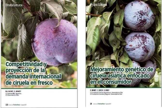 Dos artículos publicados en la revista española Fruticultura, edición especial 2021 Ciruelo